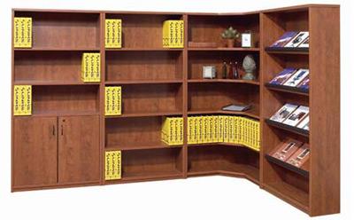 OFG/DSI Bookcase 1
